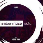 Amber Muse Radio Show #005
