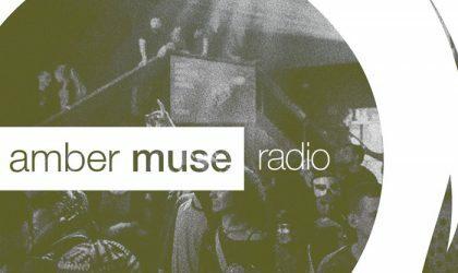 Amber Muse Radio Show #011 with Bogdan Taran // 23 Nov 2016