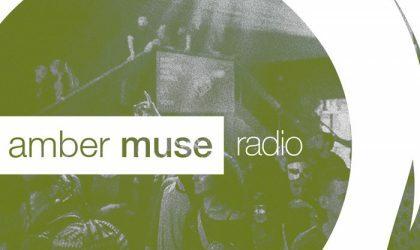 Amber Muse Radio Show #015 with Bogdan Taran // 21 Dec 2016